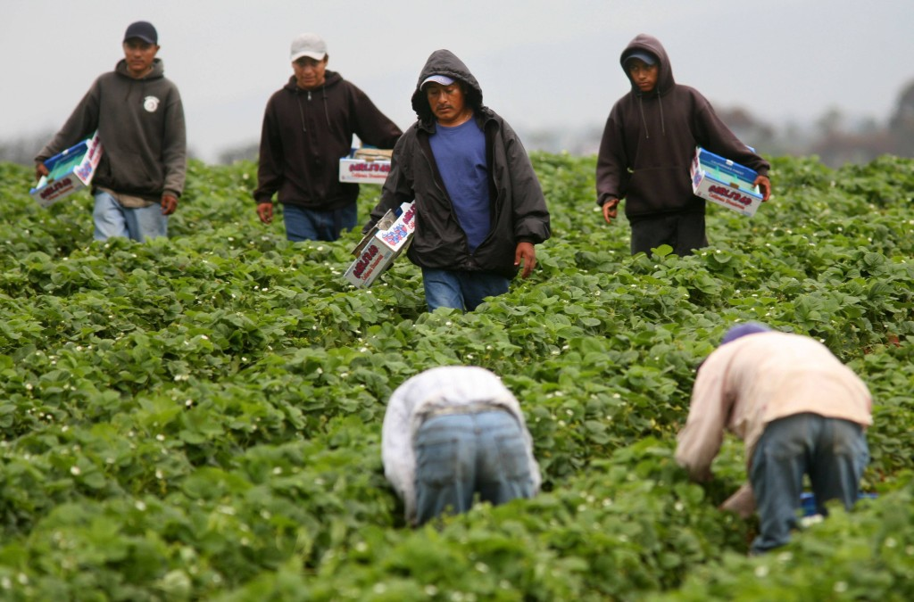 New Laws Protect Undocumented Workers From Retaliation